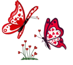 papillonlibre