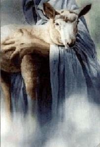 bras-jesus-agneau2