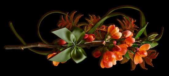 Barre Fleur 3 Messages Propheties Par Les Saints Et Les Prophetes