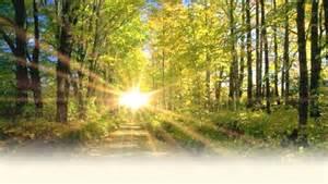 Lieu de rencontre avec dieu