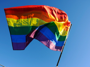 AFP_110114drapeau-gay_g