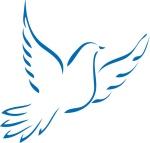 colombe-paix-276513_5