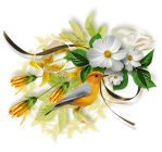 fleur oiseau