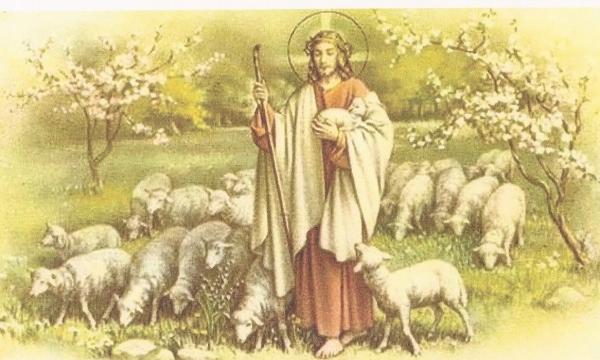 jesus-agneau