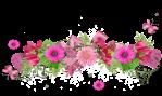 barre fleur rose