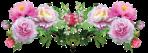 barre fleur1