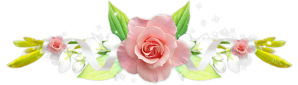 barre rose vert1