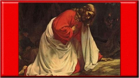 jesus-agonisant