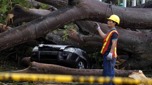 epa05642521 Workers remove a tree that fell over a car and left a child dead following heavy rains by the tropical storm Otto, in Panama City, Panama, 22 November 2016. The authorities report that at least four people died, one person is missing, some houses destroyed and delays in flights were caused by the passage of tropical storm Otto in Panama.  EPA/Alejandro Bolivar