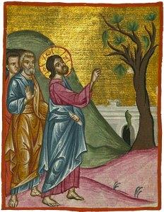 Message du Père James Manjackal pour Noël et la Nouvelle Année... Figuier