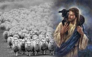 jesus-agneaux