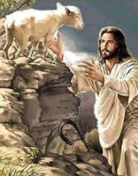 jesus-brebis