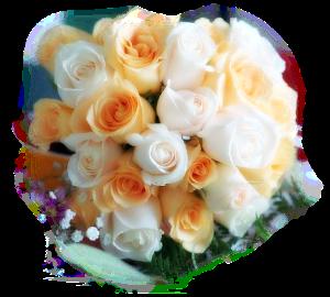 fleur blanche orange