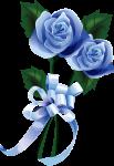 JUILLET MOIS DU PRECIEUX SANG DE JESUS   Rose-bleu