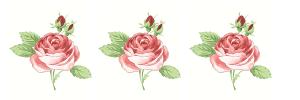barre rose trinité