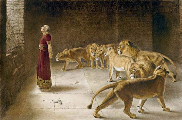 daniel fosse aux lions