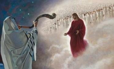 divine volonté sur la terre shofarcoming