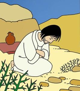 Desert jésus Christ