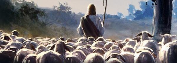 BREBIS jesus-o-bom-pastor-padroeiro