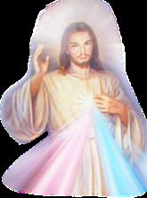 JÉSUS MISÉRICORDE jesus misericordia
