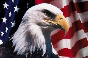 aigle-us