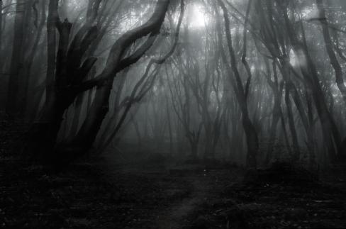 chemin ténèbre