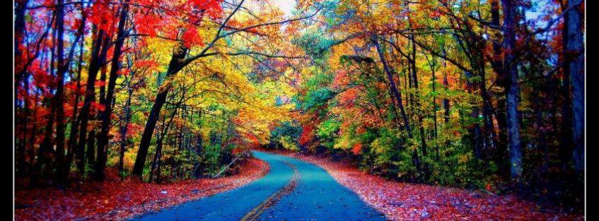 paysage merveilleux