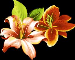 fleur orange brun