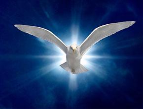 Cas très grave (blasphème contre le Saint Esprit ?)  - Page 2 Esprit-saint-et-colombe