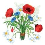 fleur prier bouquet-d-t-de-fleurs-sauvages-color-es-sur-un-fond-blanc